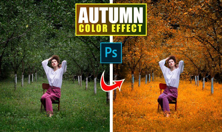 Spring to Autumn in Photoshop | Urdu Hindi