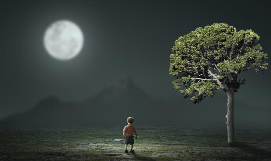 Lost Child – Photoshop Manipulation Tutorial